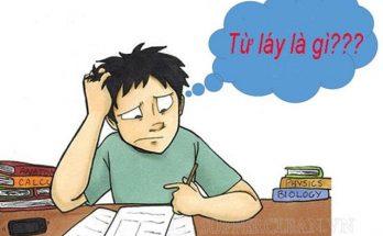 tu-lay-la-gi