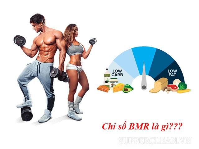 Chỉ số bmi, BMR là gì?