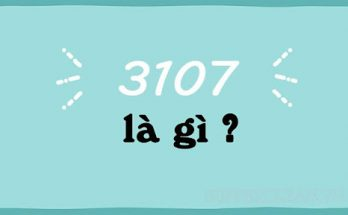 3107 là gì